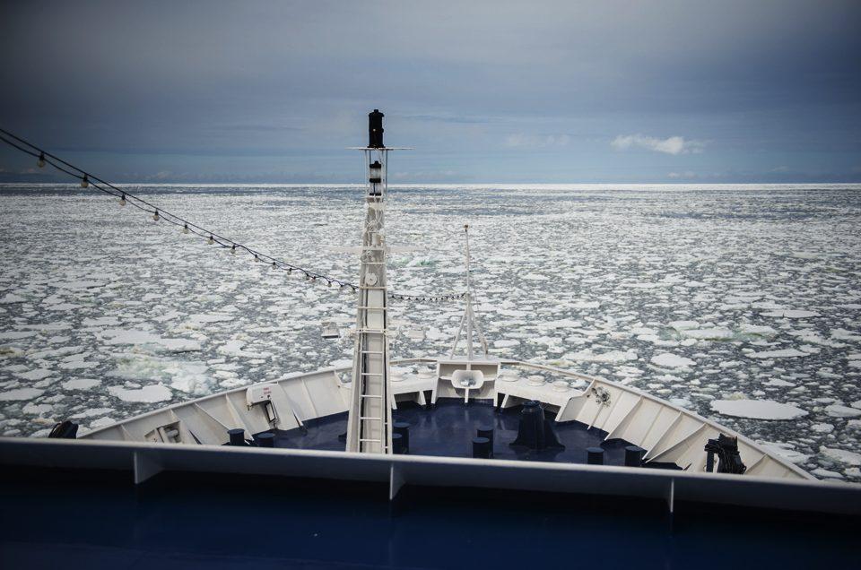 Among the ice