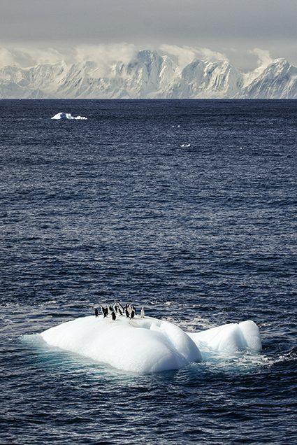 Floating on an iceberg