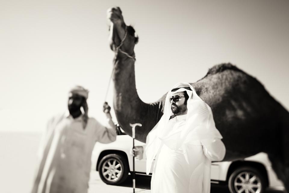 The Camel Festival #2
