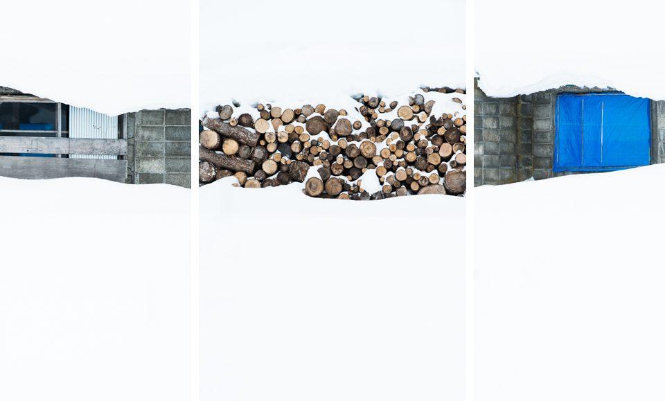 Triptych - Under the snow