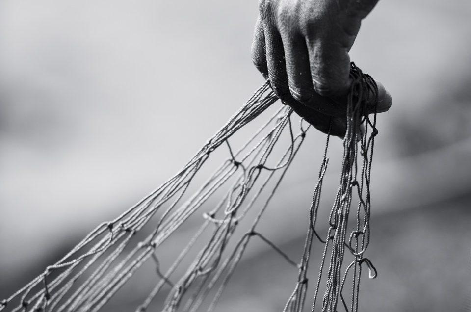 Mending the nets #2