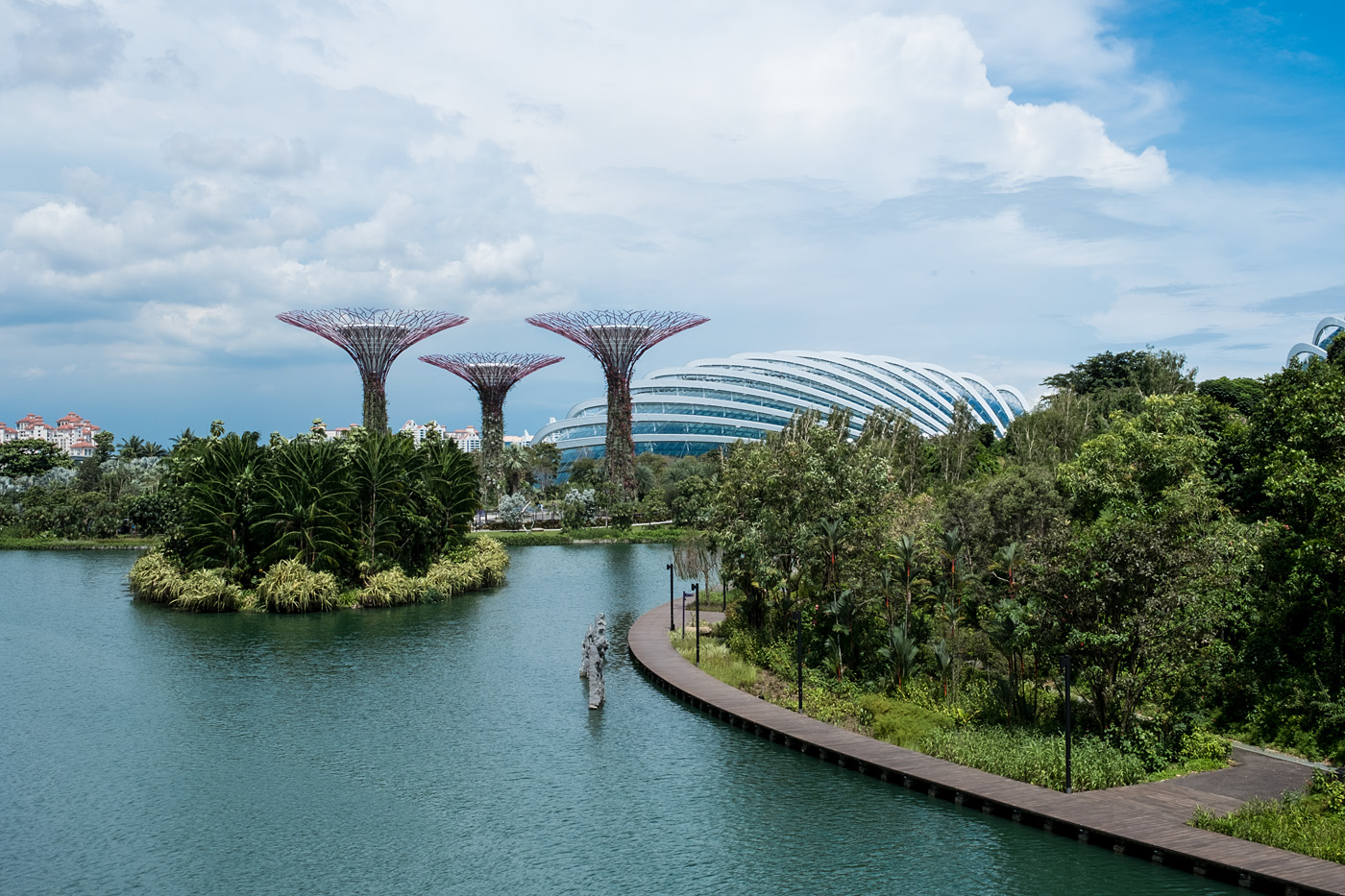 Gardens by the Bay #2