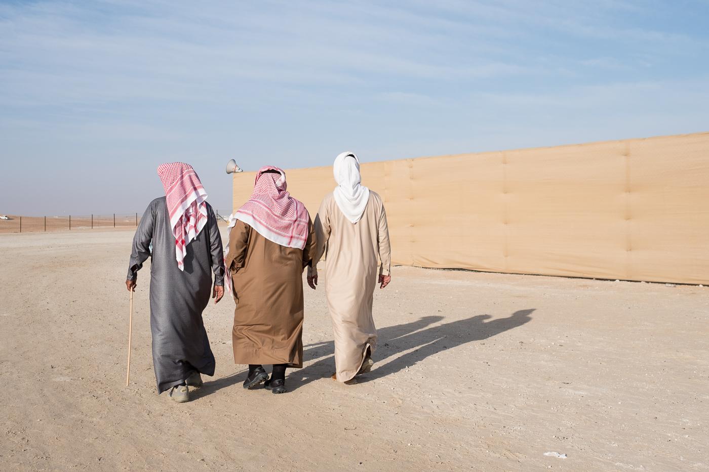 Camel fences #5