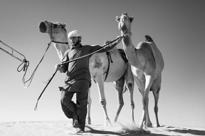 The Camel Festival #4