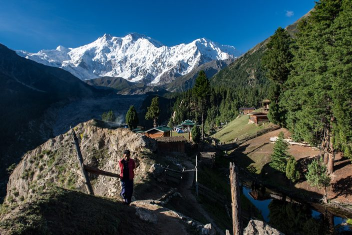 Fairy Meadows #1