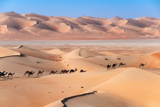 The camel path