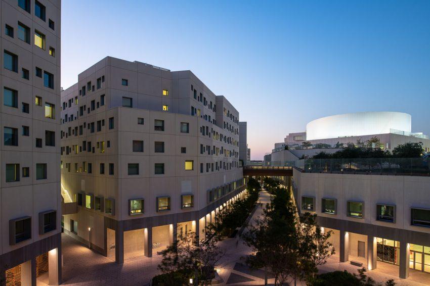 NYU Abu Dhabi